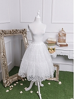 Elegant Embroidery Organza Long Petticoat by Fantastic Wind