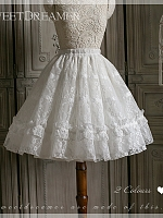 Two Way Embroidered Petticoat by Sweet Dreamer
