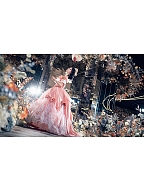 Vintage Royal Dancing Dress Costume Party Ball Gown by Souffle Song