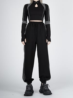 Cyberpunk Future Sense Stand Collar Long Sleeves Cropped Top by Violent Groceries